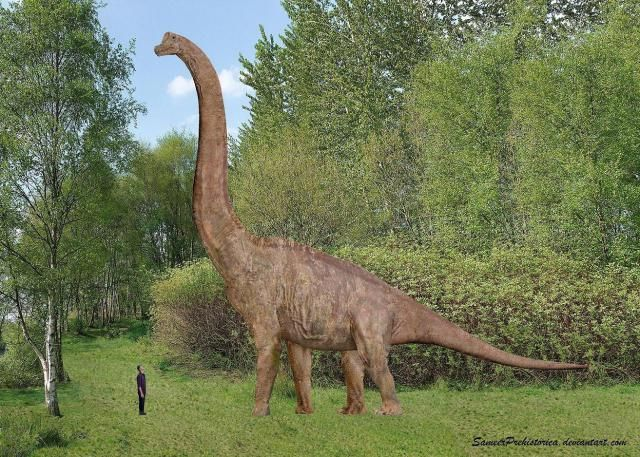 We Posed These Prehistoric Animals Next to Human Beings ...