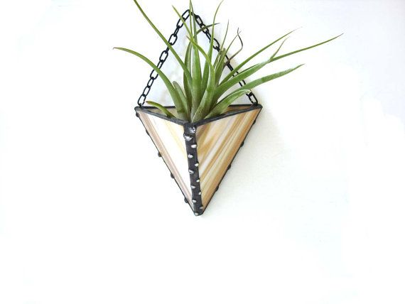 Air plant holder terrarium in wispy sand stained glass for Air plant holder ideas