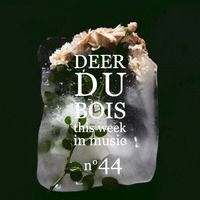 This Week in Music n°44 : July Child / GEMS / We Have Band / Lolawolf by Deer du Bois on SoundCloud
