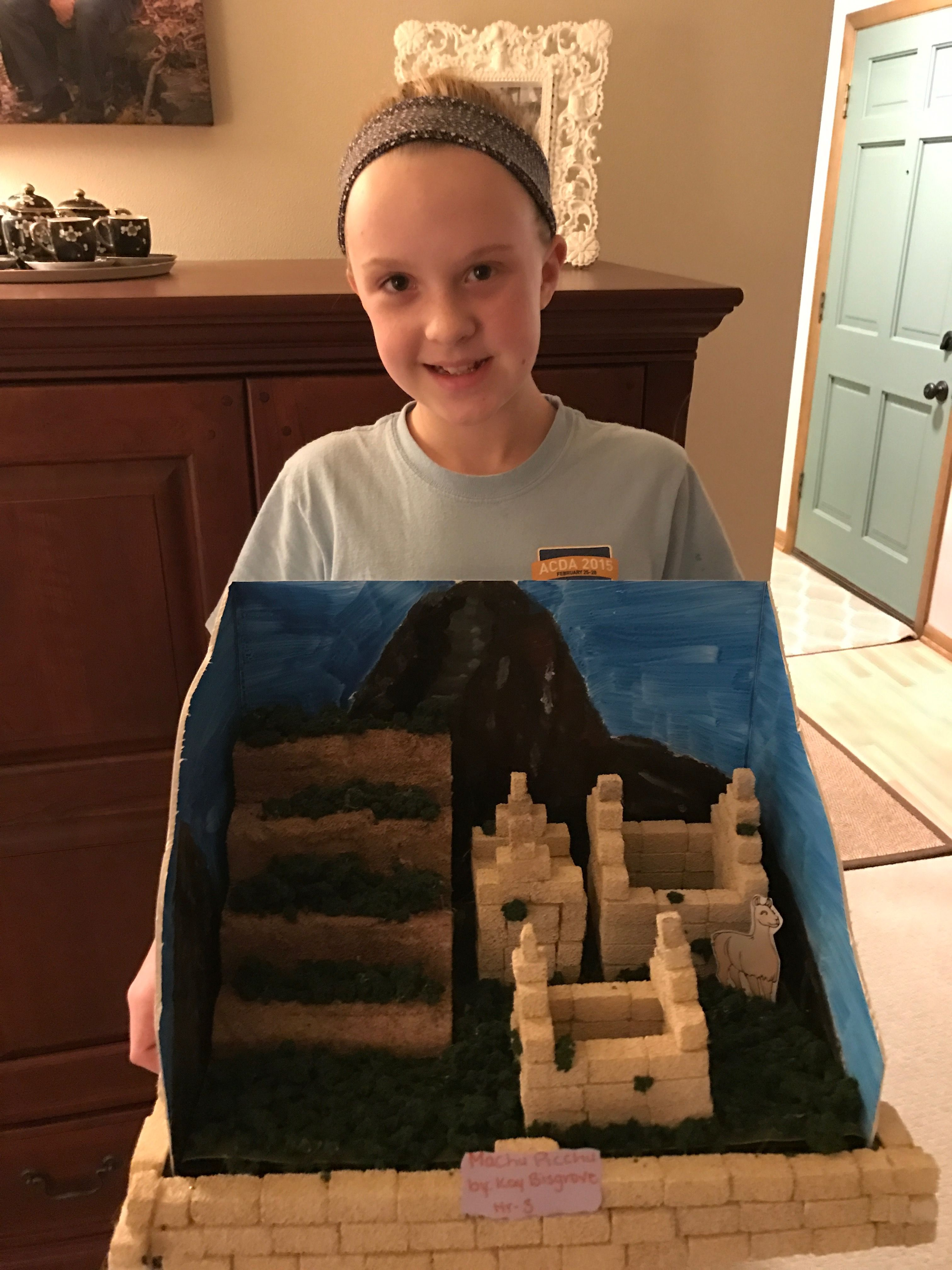 Machu Picchu 3d Design Kids Project With Images