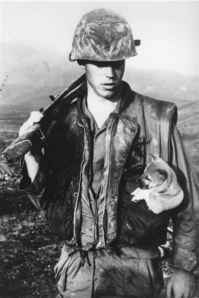 A soldier of the U.S. Seventh Marines carries a puppy in his pocket after rescuing it during an operation southwest of Da Nang in Vietnam on Jan. 22, 1968.