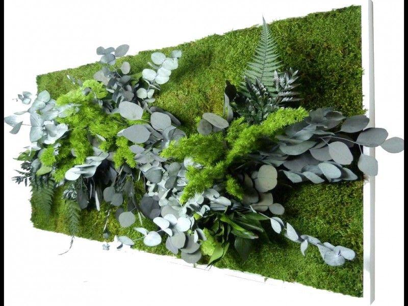 Tableau Mur Vegetal