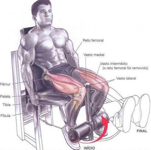 Exercicios Para Pernas Cadeira Extensora Com Imagens