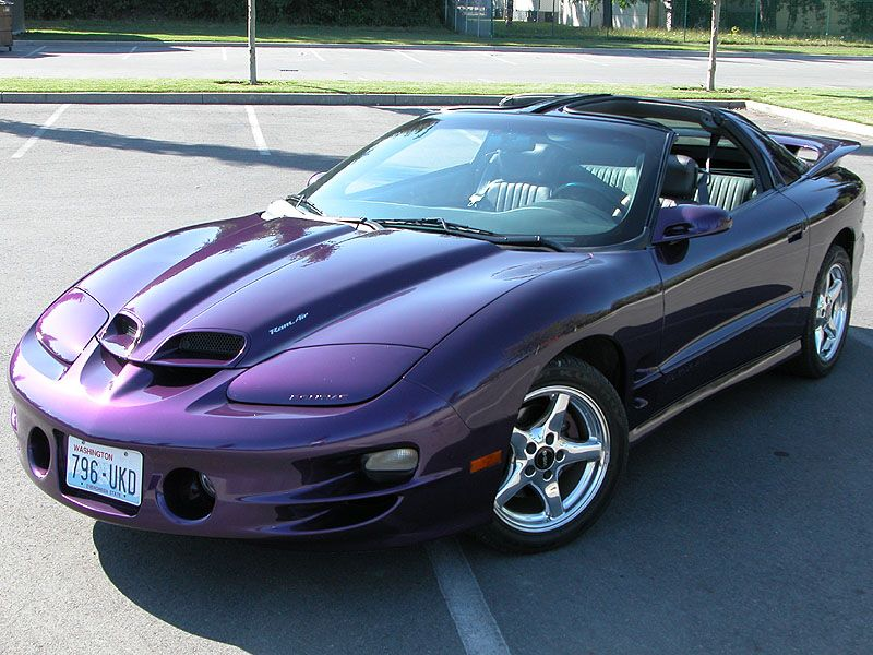 1999 pontiac trans am ws6 stock purple rare cars pinterest firebird and cars. Black Bedroom Furniture Sets. Home Design Ideas