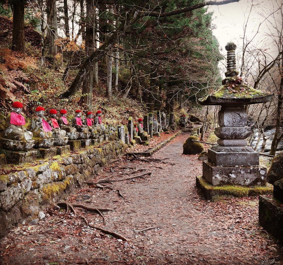 Nikko 😻⛩🎌🌸😃 #japan #nikko  #autumn #herbst #buddha