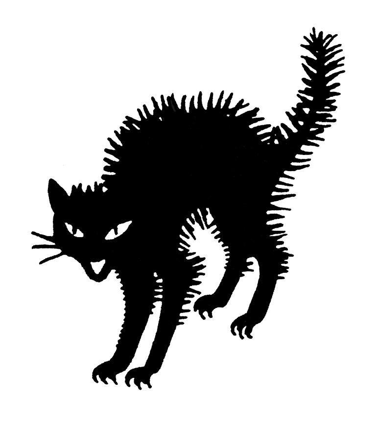 cat+silhouette+clip+art | Halloween: Black Cat Photograph ...