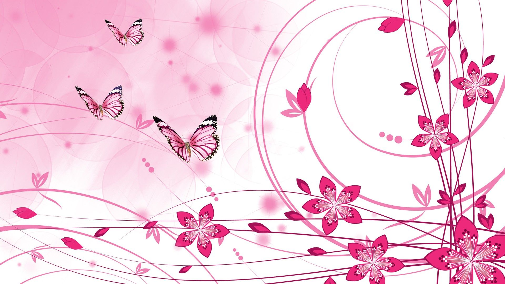 Pink Color Hd Wallpapers Butterfly Pink Wallpaper Colorful