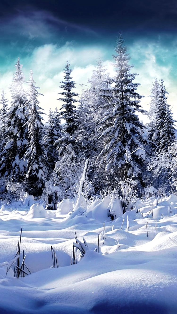 Iphone 6 Winter Wallpaper Gallery Winter Scenery Winter Pictures Winter Landscape