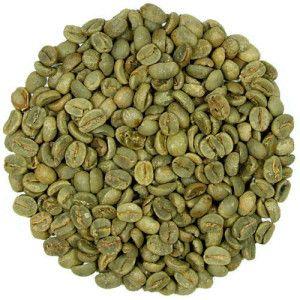 Green coffee vægttab