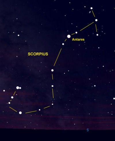 Scorpius Is One Of The Few Constellations That Looks Like Its