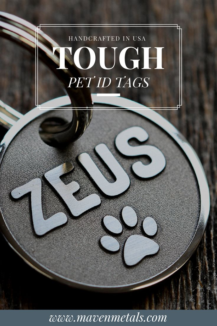 Looking for Tough Pet Tag that your dog won't chew through