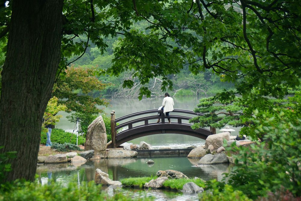 Scenic views from the Osaka Garden located on Chicago\'s South Side ...