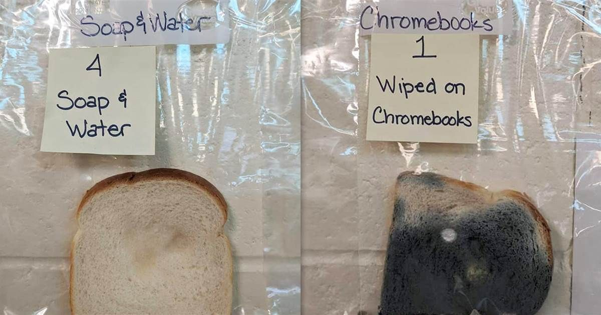Gross School Experiment Shows Students Why They Need To Wash