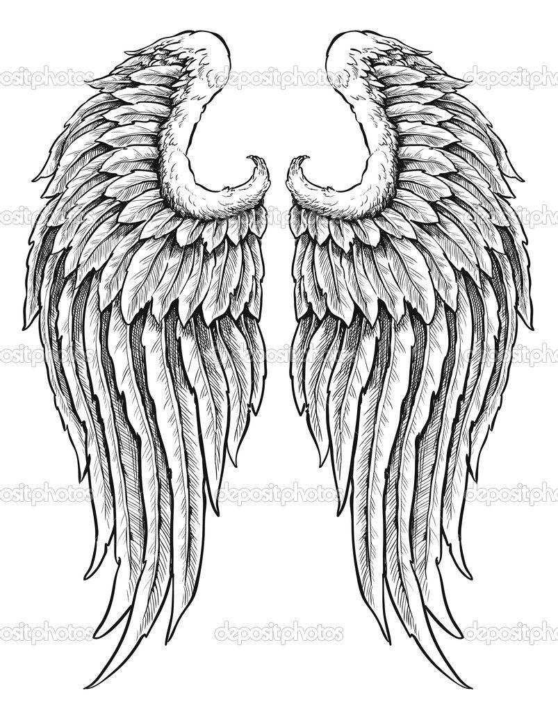 herunterladen hand gezeichneten engel fl gel stockillustration 27056697 tattoo pinterest. Black Bedroom Furniture Sets. Home Design Ideas