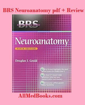 Download Brs Neuroanatomy Pdf Review Buy Hard Copy All Medical
