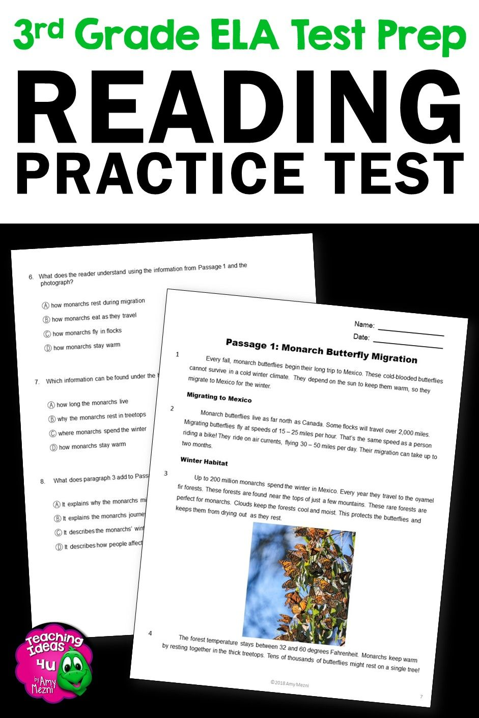 Ela Test Prep Reading Practice Test Fiction Nonfiction Grammar 3rd