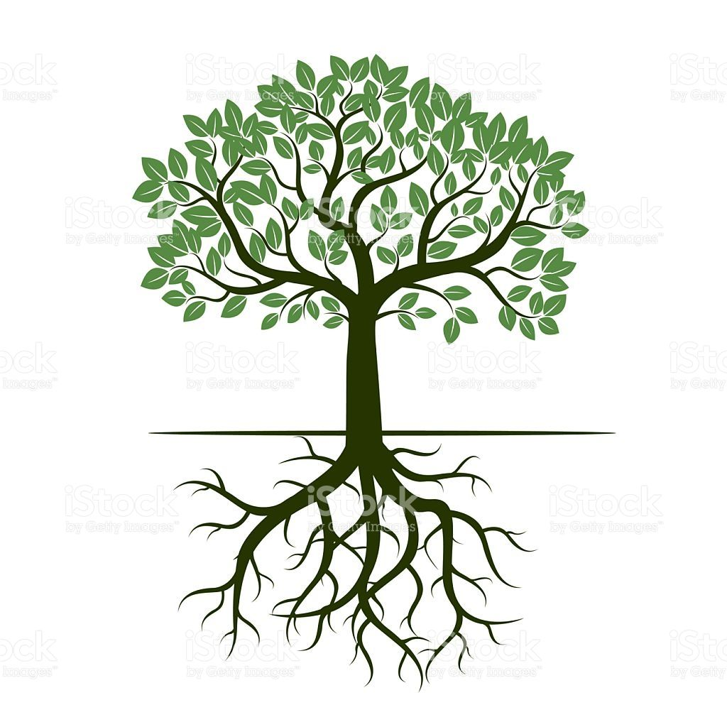 Image result for vector art tree with roots | Träd | Pinterest ...
