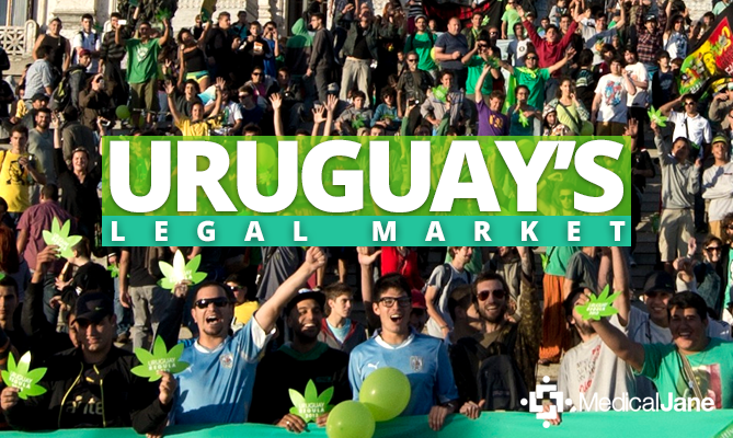 The Success, Potential, and Flaws of Uruguay's Legalization Experiment http://www.medicaljane.com/2015/01/10/the-success-potential-and-flaws-of-uruguays-legalization-experiment/