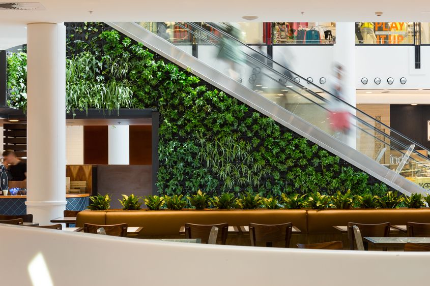 Canberra Centre Food Court Design Practice Cox Architecture in