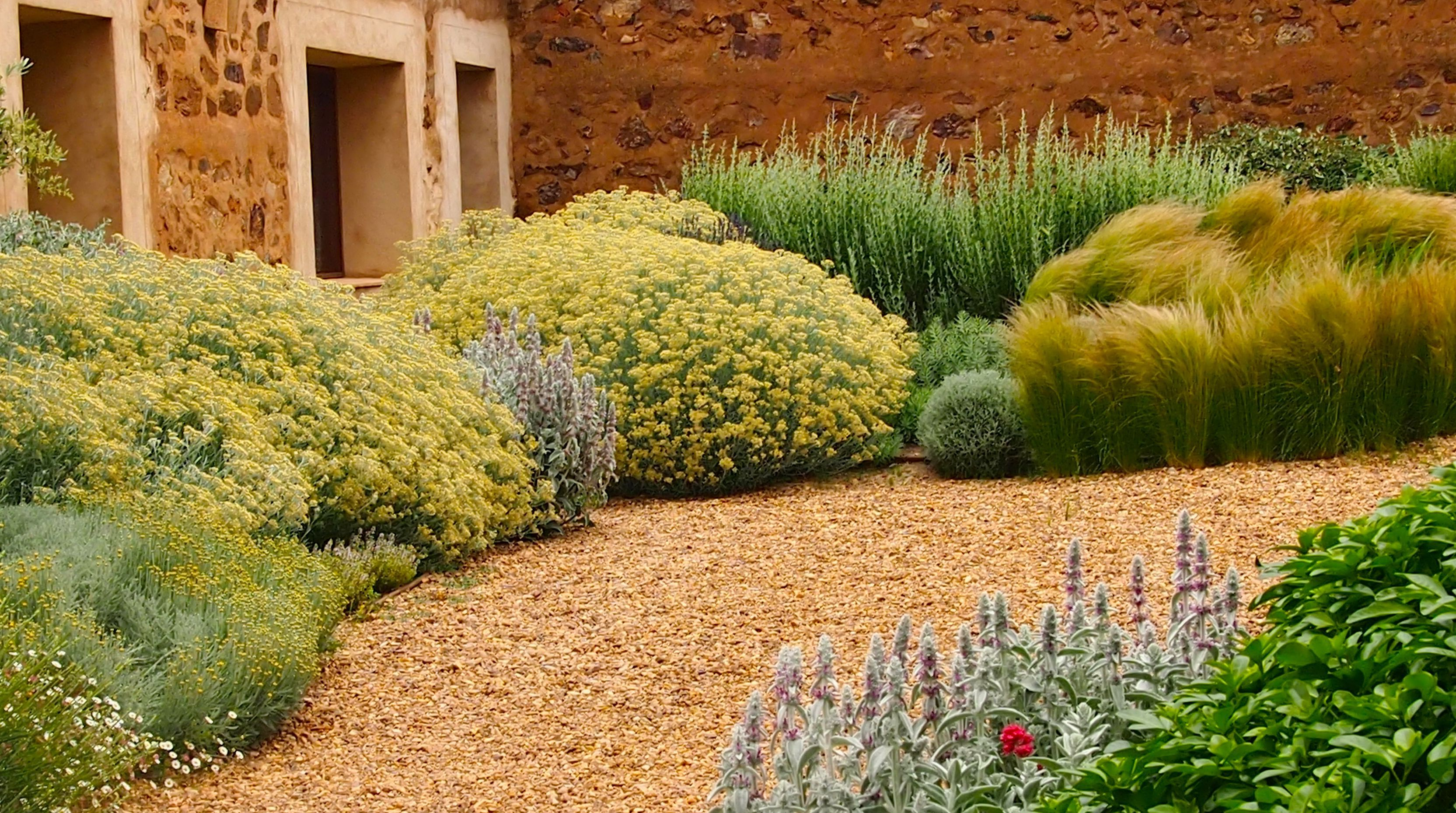 Jardin toledo 2009 detalle plantaci n patio jard n Plantas jardin mediterraneo