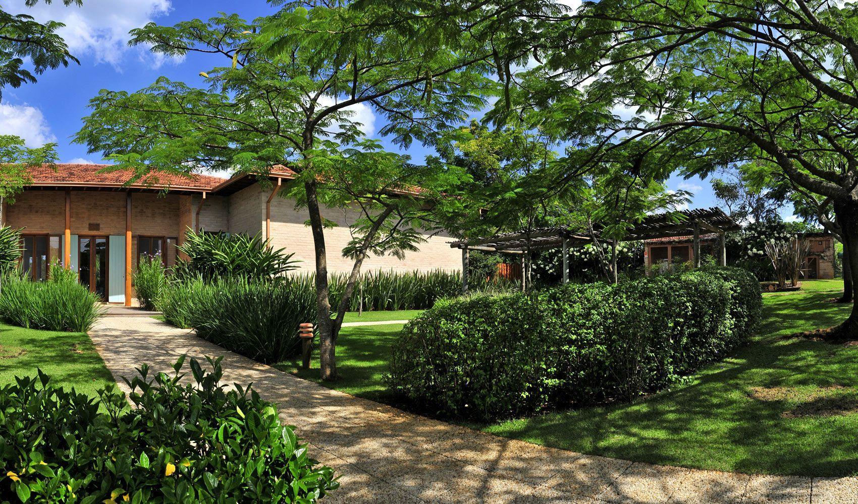 diseo de exteriores jardines modernos y tropicales