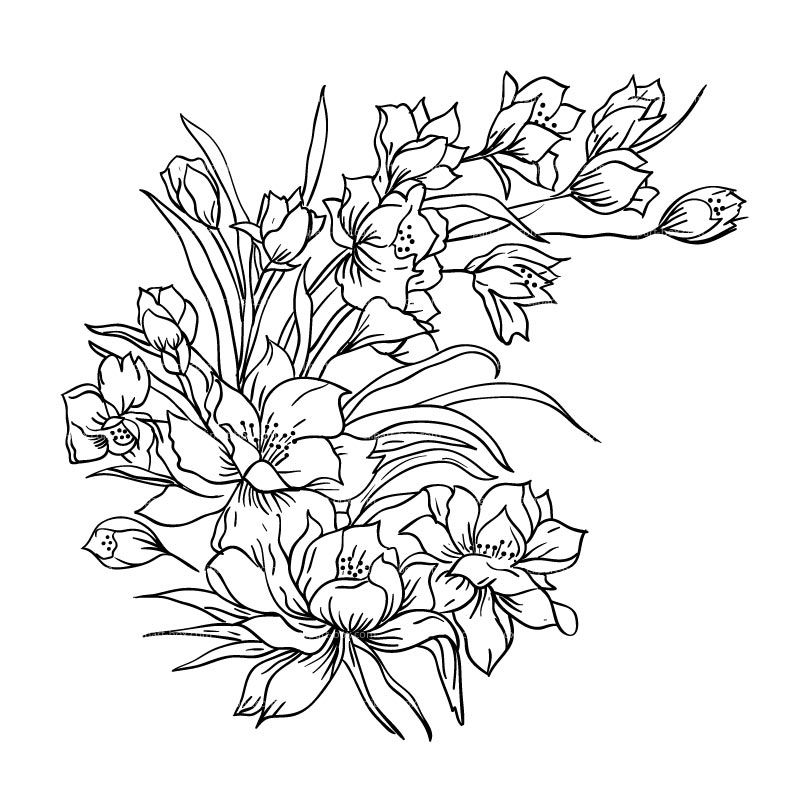 Wedding Flower Line Drawing : Drawing of flower bouquet best sketch ideas
