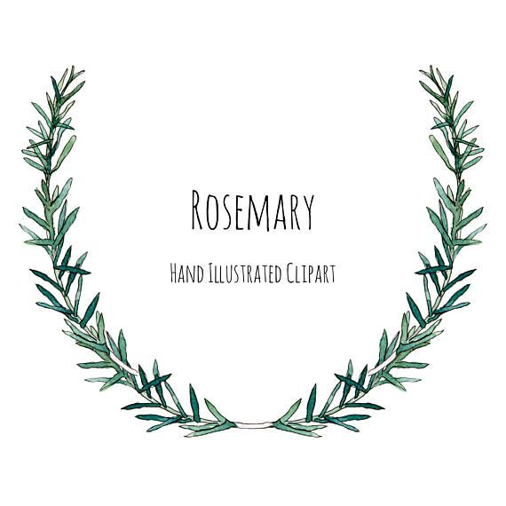 Clipart - Illustration - Rosemary herb - wreath, frame and ...