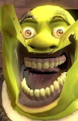 Its Late I M Tired A Shrek X Shadow Fanfic Get Out Mi Swamp Memes De Animales Divertidos Caras De Memes Memes Divertidos