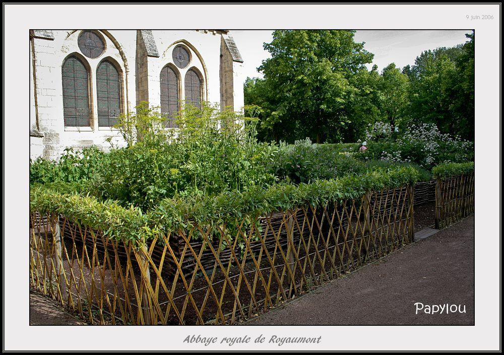 osiers vivants tressés + - Recherche Google | fencing with plants ...