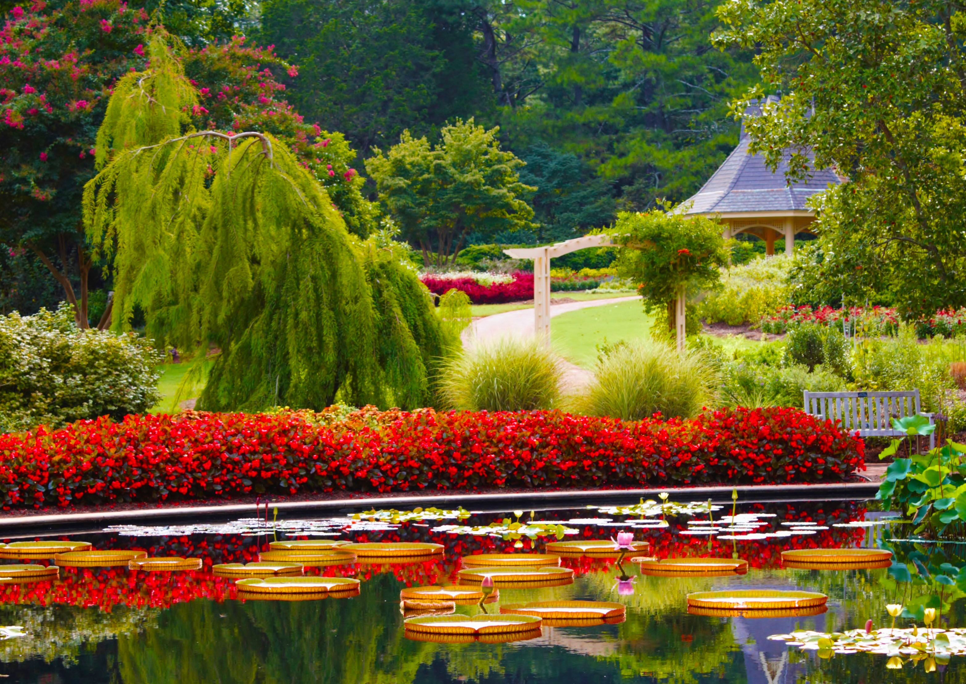 69aea59f9384a40ffc32664b24fd8f84 - Botanical Gardens Mother's Day Brunch 2019