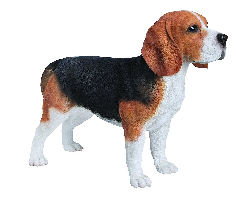 Vivid Arts Xrl Beag A Beagle Dog Resin Ornament Beagle Dog