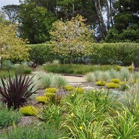 massif de gramin es ornementales phormium et hemerocales garden design am nagement. Black Bedroom Furniture Sets. Home Design Ideas