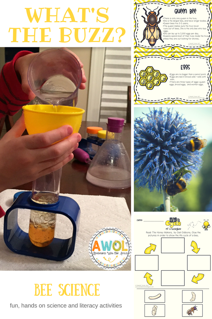 Bee Science Life Cycle Worksheets And Experiments Bee Life Cycle Life Cycles Lesson Plans Life Cycles Lessons [ 1102 x 735 Pixel ]