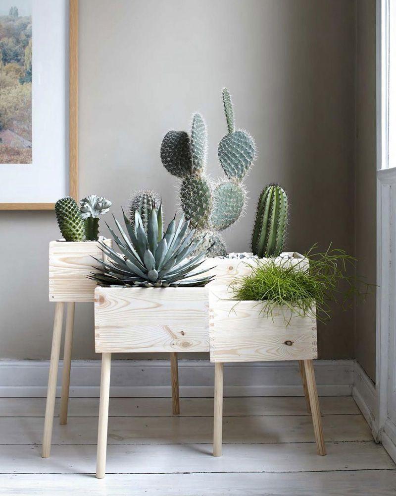 Planter Dans Une Caisse En Bois 10 idées diy avec des caisses en bois | jardiniere interieur