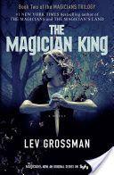 Download the magicians elephant ebook