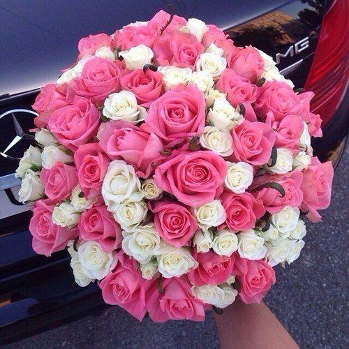 اجمل صور بوكيه ورد كبير و صغير و فرنسي اجمل الالوان و الصور فوائد زراعة الورد صور اجمل 15 بوكيه ورد كبير صور اجمل 5 ب Flowers Pretty Flowers Love Flowers