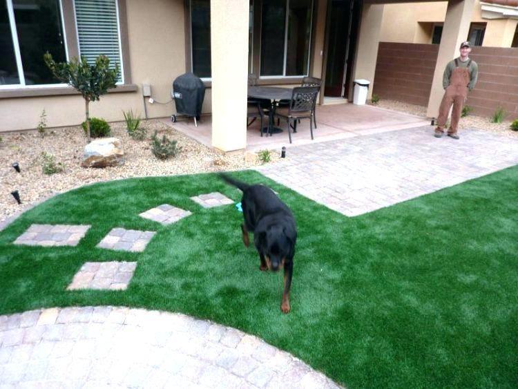 Dog Friendly Backyard Ideas Medium Image For Backyard Ideas Dogs