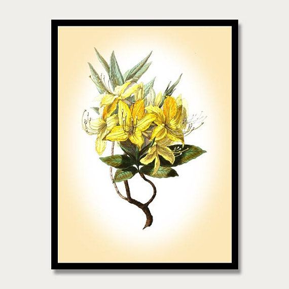 Yellow Flower Watercolor Print, Botanical Wall Art, Plant Painting ...