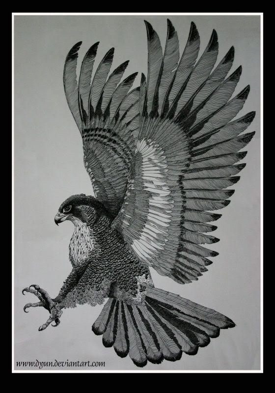 Red Tail Hawk Tattoo Idea Tatuagem Aguia Tatuagem E Falcao