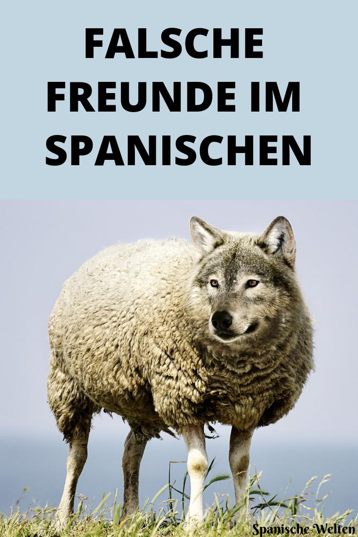 falsche freunde im spanischen spanisch spanisch vokabeln und spanisch sprache