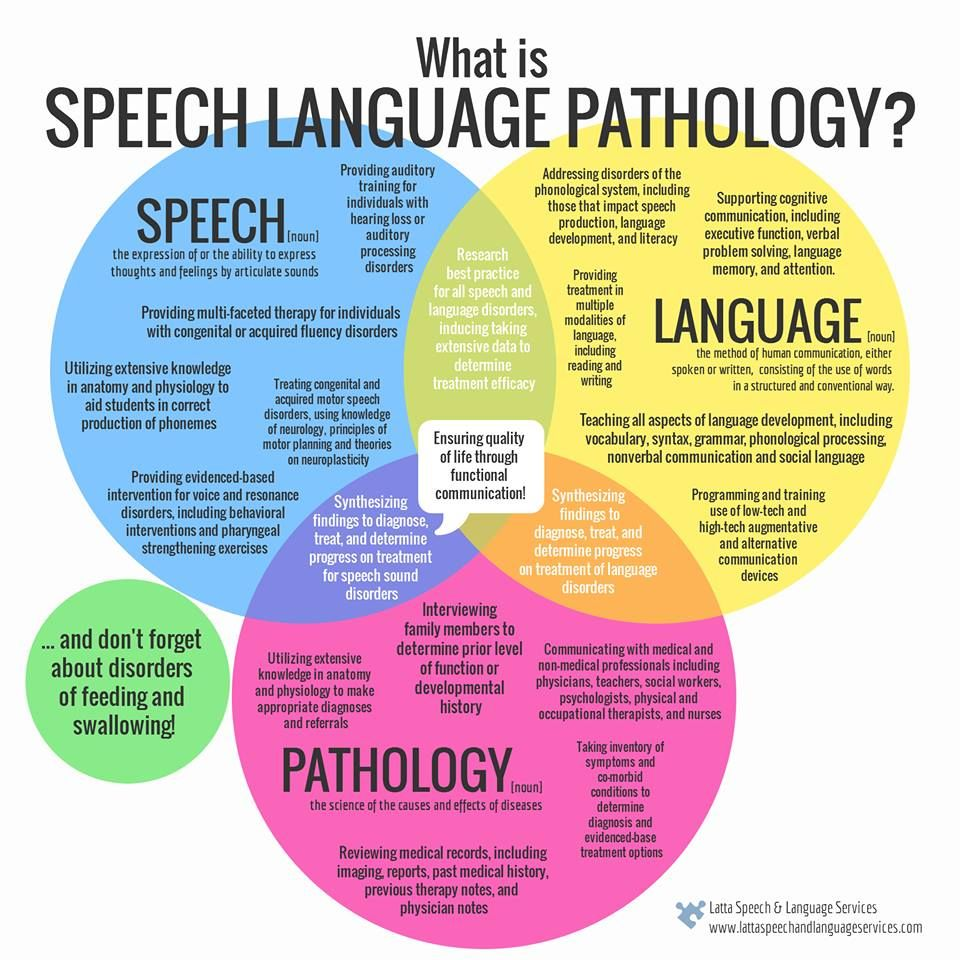 What Is Speech Pathology >> What Is Speech Language Pathology The Difference Between