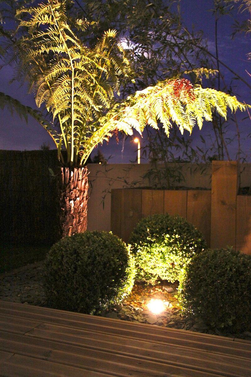 Eclairage Exterieur Luminaire Jardin Eclairage Exterieur Jardin Eclairage De Jardin Eclairage Exterieur