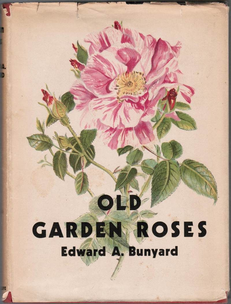 Pin By Judy Mccallum On Seeds Vintage Book Covers Gardening Books Rose Painting