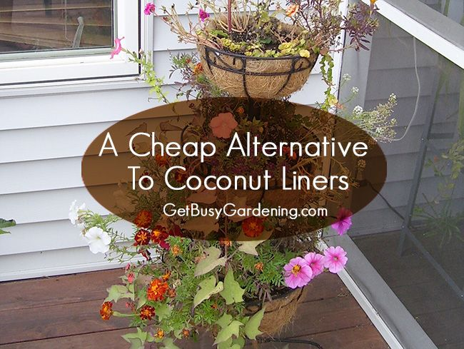 A Cheap Alternative To Coconut Liners For Hanging Baskets Planters Hanging Plants Diy Diy Hanging Planter Plants