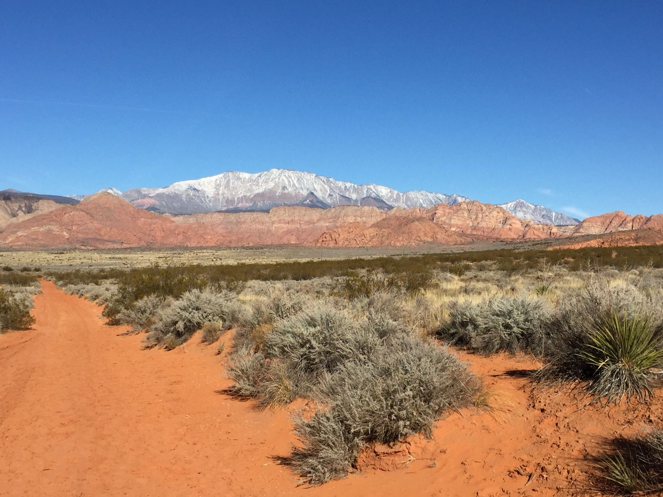 Pine Valley Mtn From Washington Utah | Pine valley ...