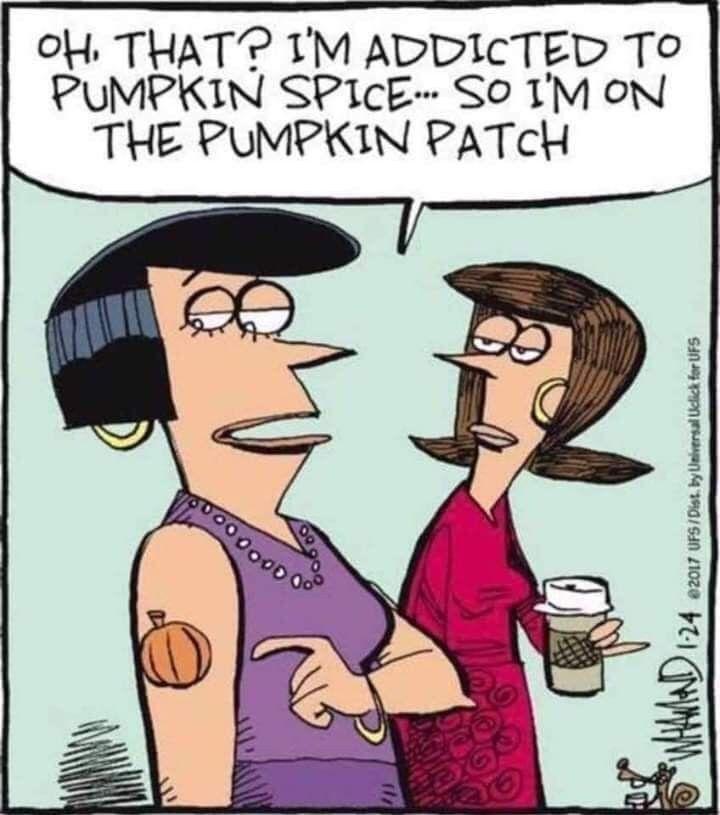 Autumn meme   Pumpkin spice, Halloween quotes, Halloween funny