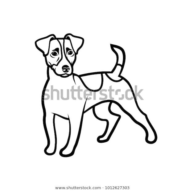 Jack Russell Terrier Dog Isolated Vector เวกเตอร สต อก ปลอดค าล ขส ทธ 1012627303 ภาพประกอบ