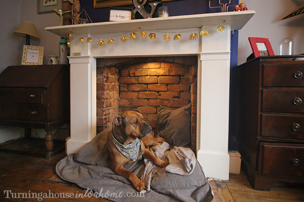 Updated Blog Post How To Turn A Fireplace Into A Dog Bed Now