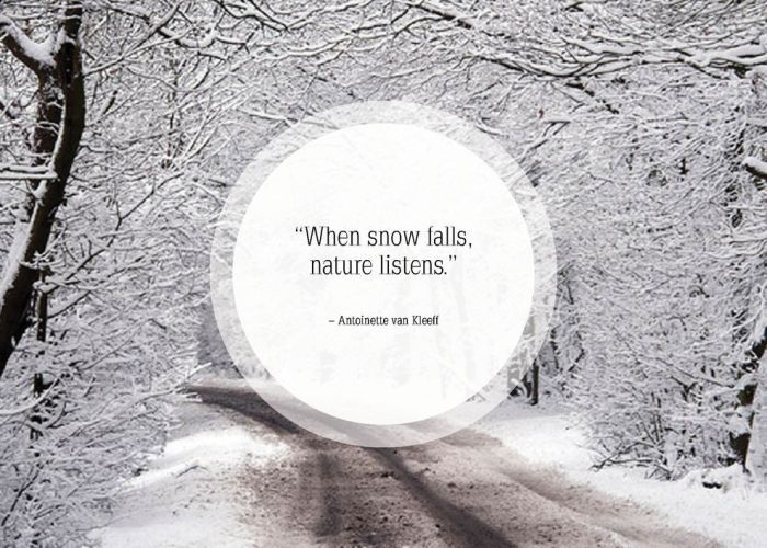 Great Quotes About Snow (25 pics)