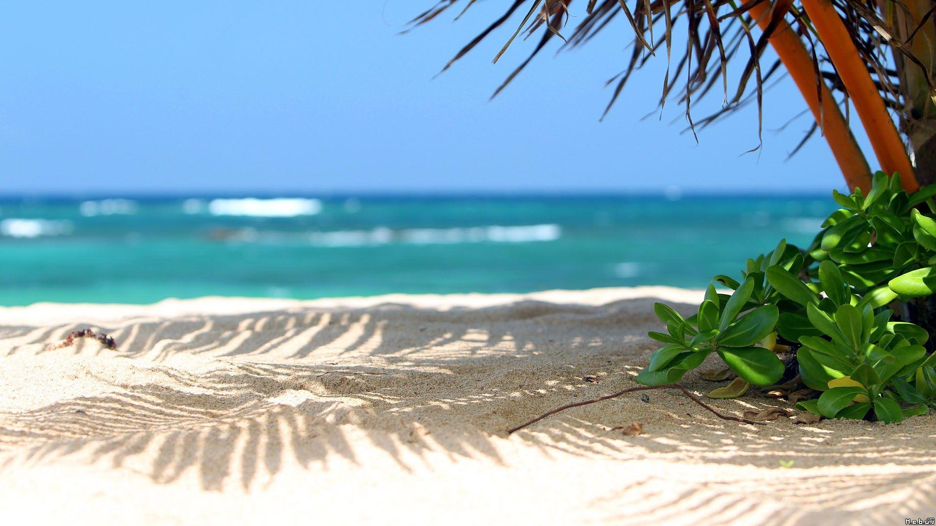 the beautiful seaside scenery - photo #5